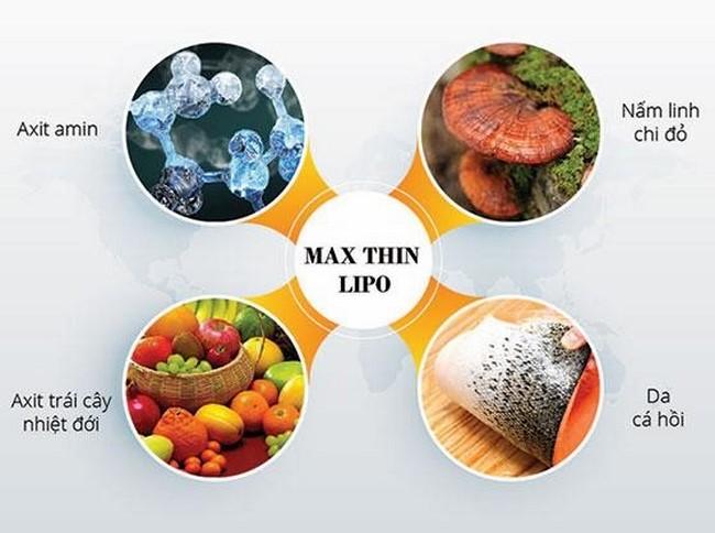 Các thành phần tự nhiên trong tinh chất giảm béo Max Thin Lipo
