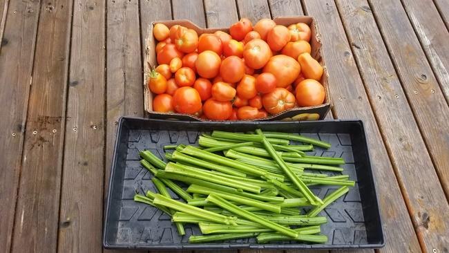 Nước ép cần tây cà chua và chanh tươi
